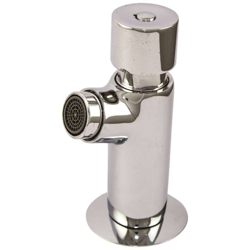 Demand & Metering Bib Tap, Stainless Steel