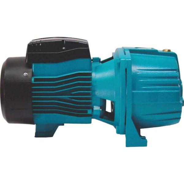 LEO AJDM75/2H Deep Well Jet Pump (0.75kW, 1.0hp, 220V)